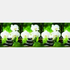 """Кухонный фартук """"Орхидея с камнями"""" 0,60*3,00 м"""
